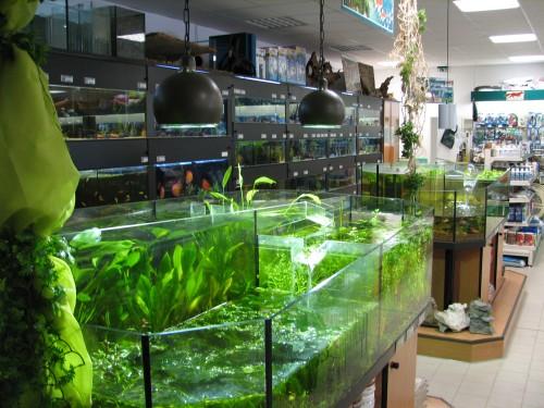 Landfuxx toeging alles f r tier garten und aquaristik for Aquaristik katalog